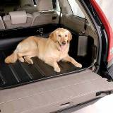 Carbox Classic Boot Liner