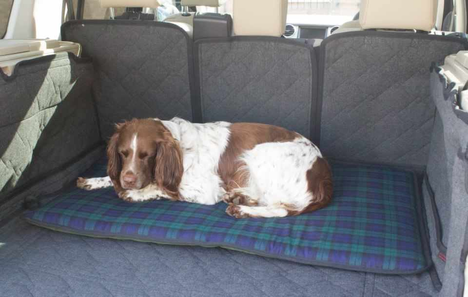 Travel Dog Bed >> Travel Dog Beds For The Car And Home